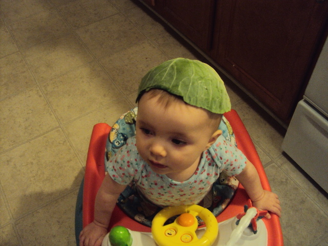 A cabbage leaf makes a good hat.