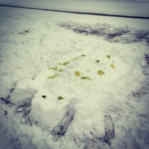 Well, we needed to make a snow turtle first. We called him Studs Turtle.